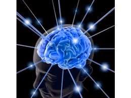 Info 5 Tips Menjaga Otak Sehat