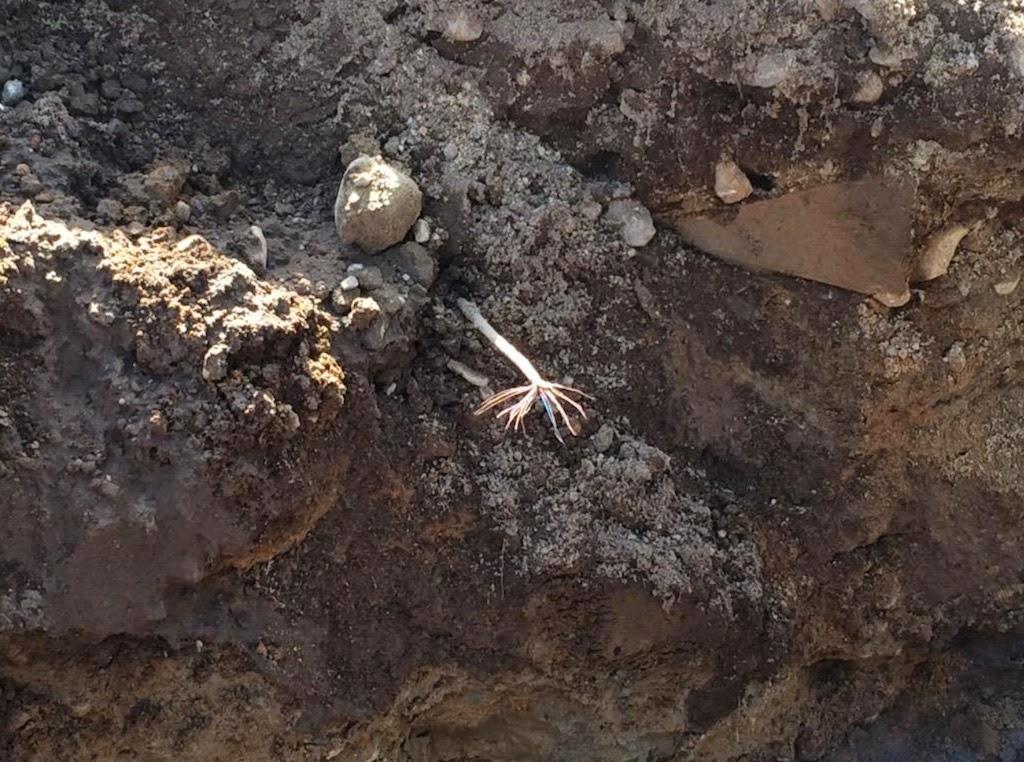 gräva fiber kostnad