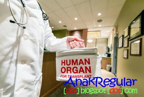 5 Kisah Transplantasi Organ Yang Menghebohkan