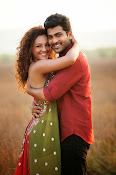 Run Raja Run Movie Stills-thumbnail-3