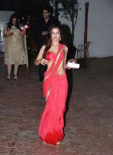 amisha patel hot in saree