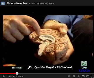 <b>Redes-porque-nos-engaña-el-cerebro-VIDEO-Redes-331-youtube</b>