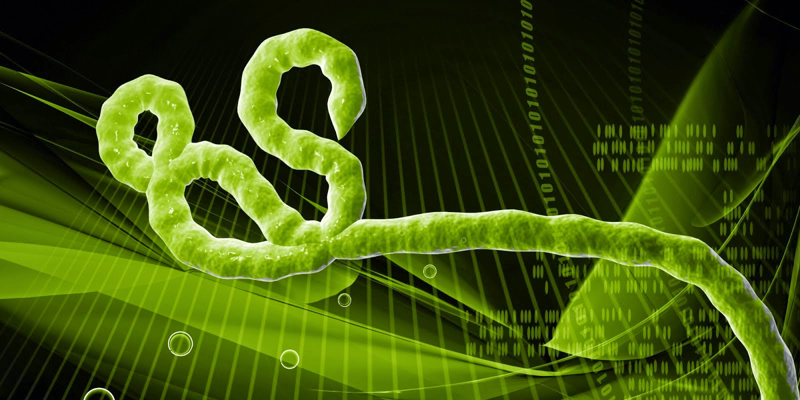 Ebola Virus HD Wallpapers | Download Free High Definition ...