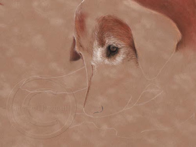 Step 1 of Dog Portrait