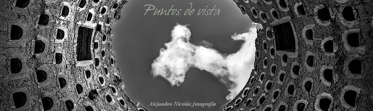 PUNTOS DE VISTA  - Alejandro Nicolás Fotografía