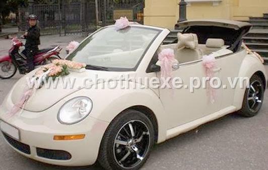 Cho thuê xe cưới VolkWagen Beetle hạng sang