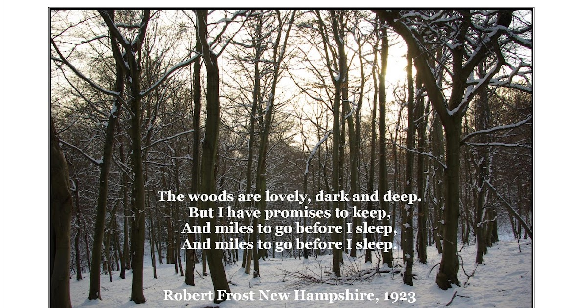 Stopping by woods on a snowy evening essay