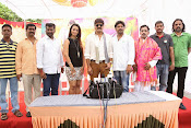 Jalsarayudu movie opening photos-thumbnail-13