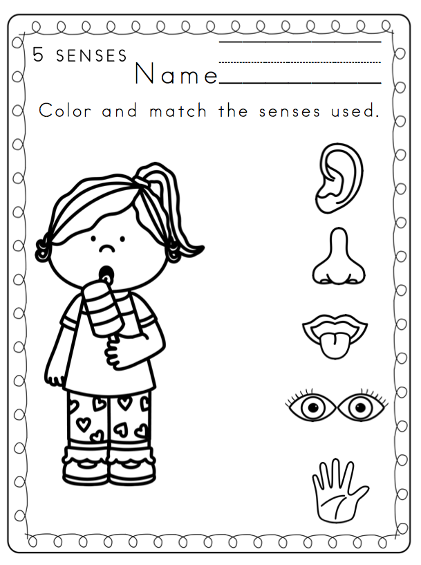 Toddler 5 Senses Printable ~ Preschool Printables