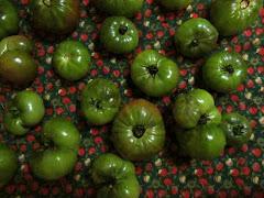 Lucie Hébert<br> Tomates vertes