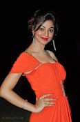 Shilpi Sharma Photos at Green Signal Audio-thumbnail-19