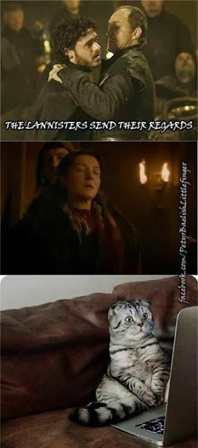 boda roja gato - Juego de Tronos en los siete reinos