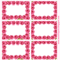 free pink rose labels
