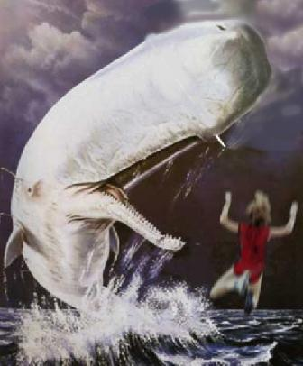what kind of whale was moby dick