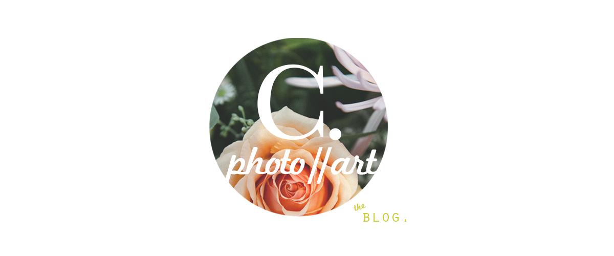 C L A I R E  M  R E I T Z : the blog.
