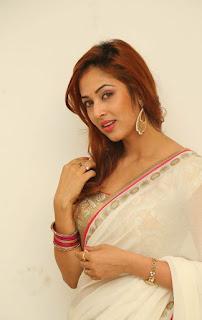Actress Vidisha Srivastava Latest Pictures in Saree at Harinath Wedding Reception  2.jpg