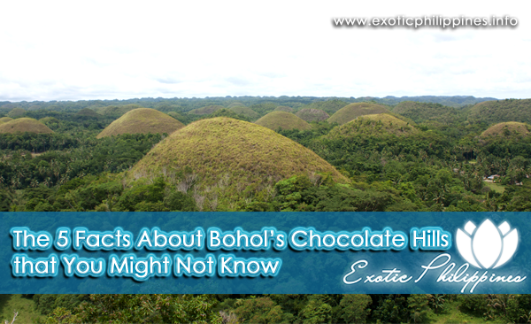 The 5 Facts About Bohol's Chocolate Hills that You Might Not Know