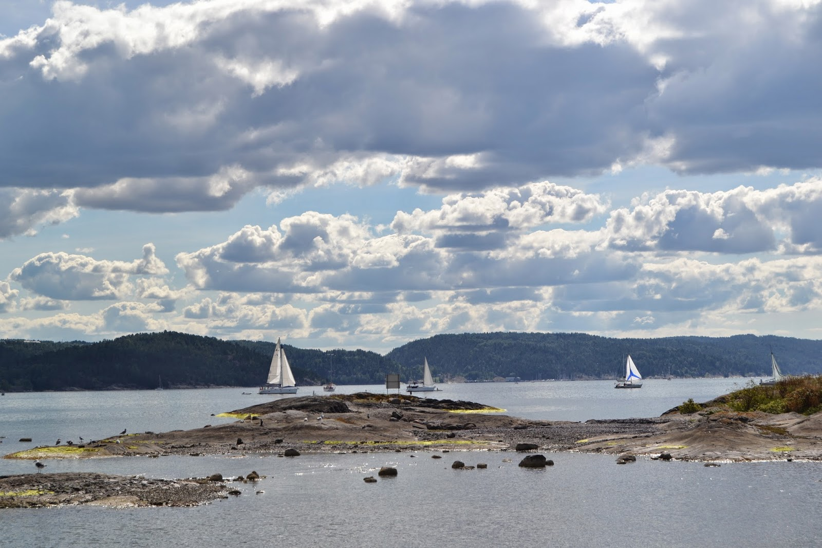 Oslo boats