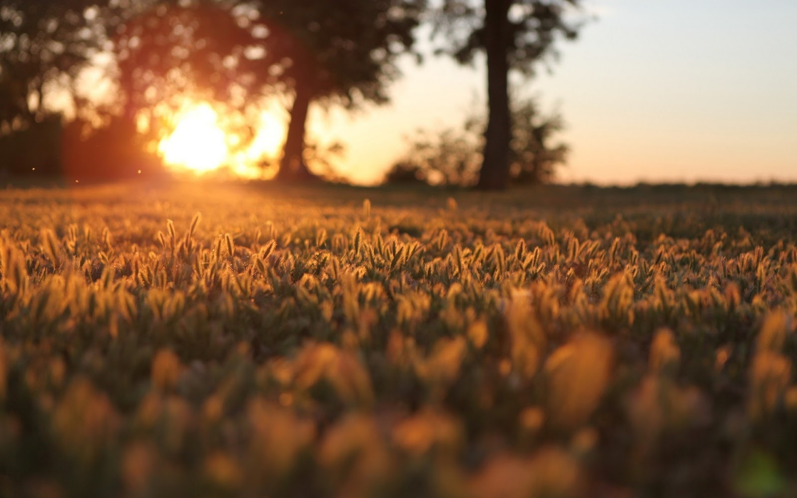 http://2.bp.blogspot.com/-LyN8MZDUxSk/T5K-LRg6eYI/AAAAAAAAAOg/Nk2UZkEBj3k/s1600/warm+sunset+wallpaper.jpg
