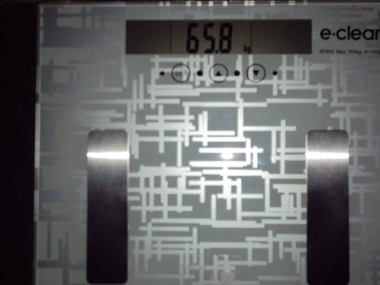 domingo 4 de novembro de 2012 #5E6D5E 1600x1200 Balança De Banheiro G Life