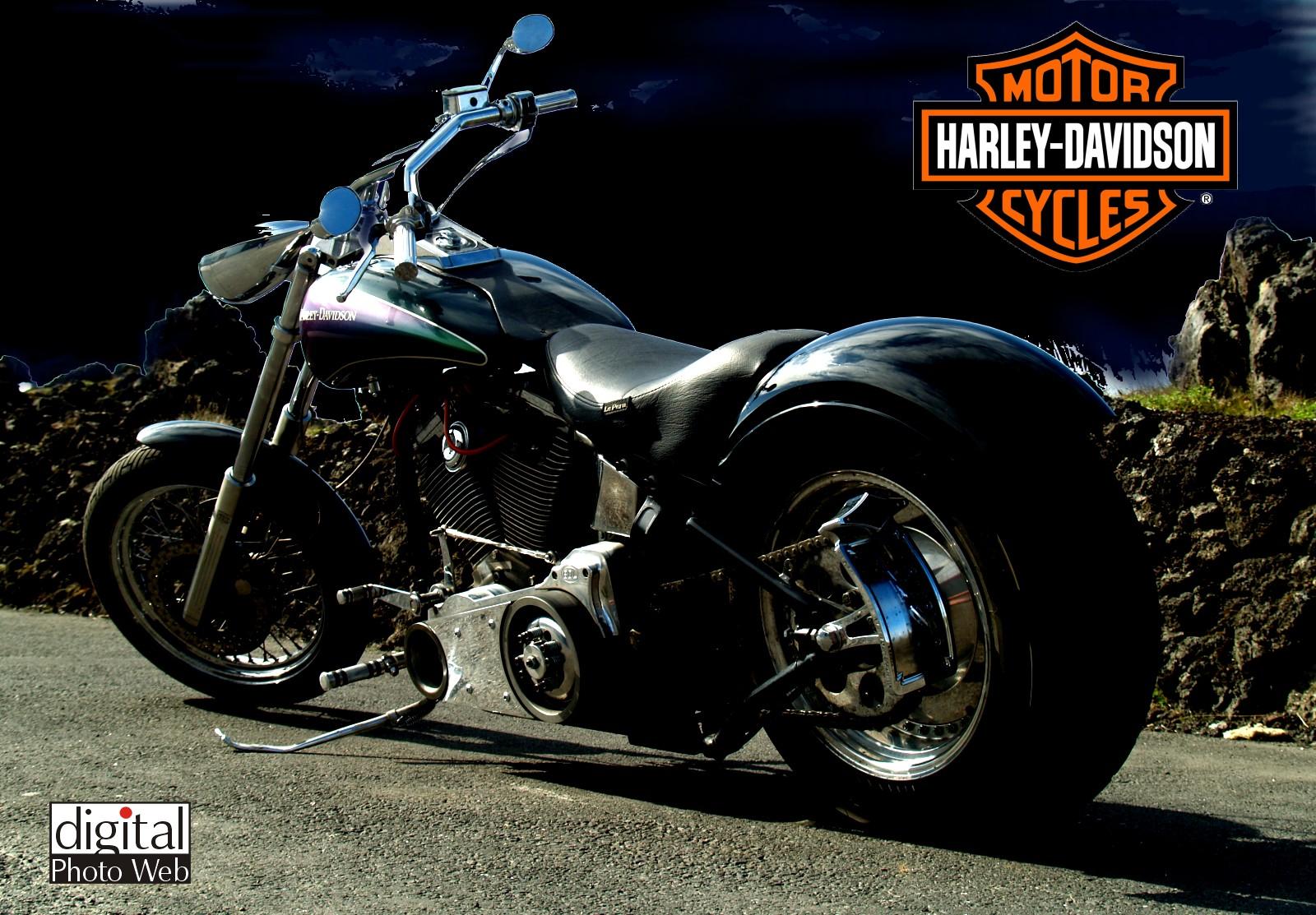 harley davidson motorcycle. Black Bedroom Furniture Sets. Home Design Ideas