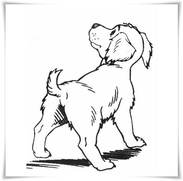 Malvorlagen Hund 80 Ausmalbilder - Schulbilder org