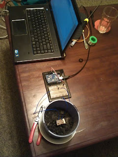 Laptop connected to Arduino connected to flowerpot