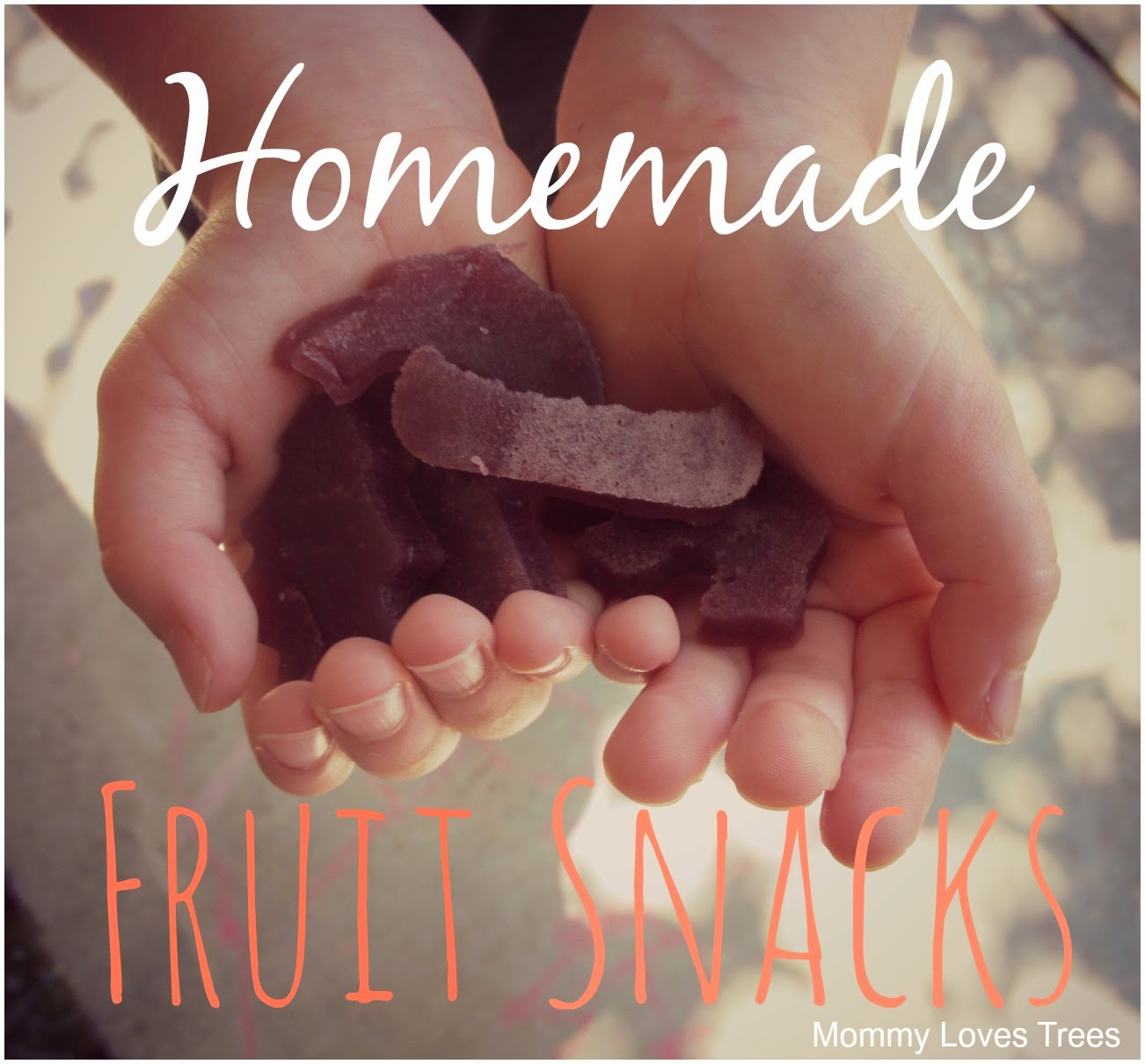Homemade Fruit Snacks - only 3 ingredients
