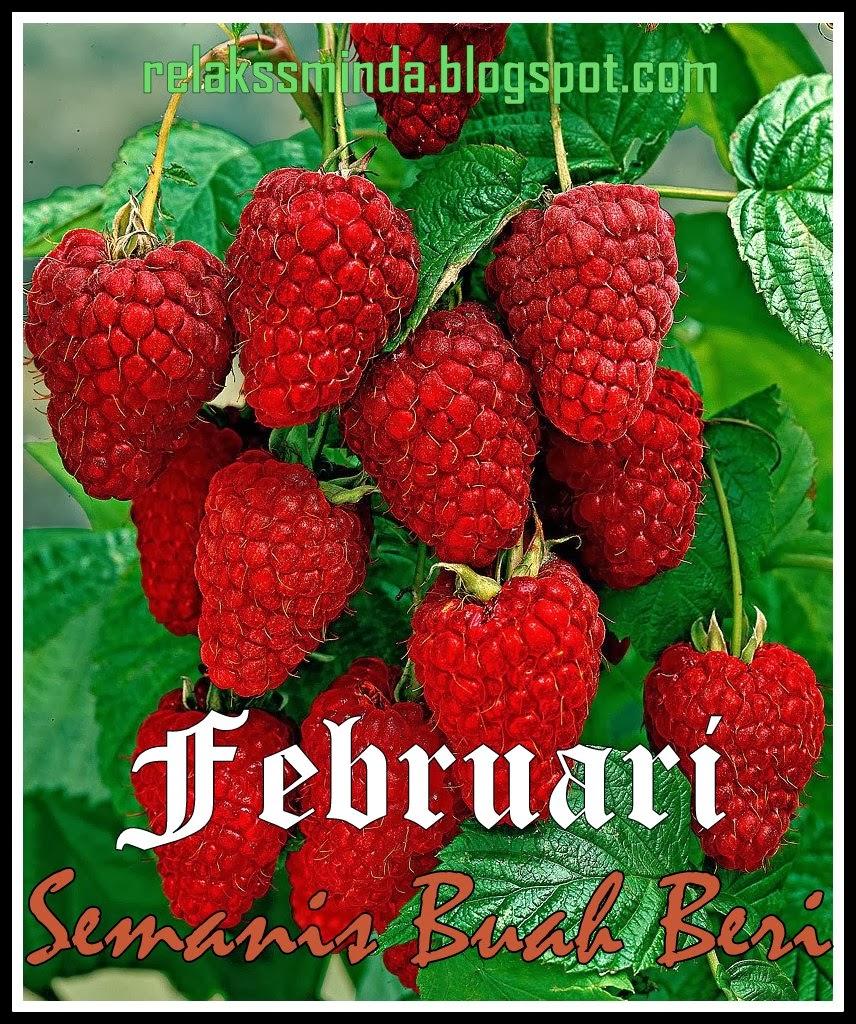 Februari - Semanis Buah Beri
