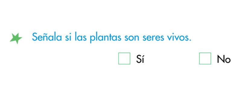 http://www.primerodecarlos.com/SEGUNDO_PRIMARIA/enero/tema1/actividades/CONO/plantas_seres_vivos.swf