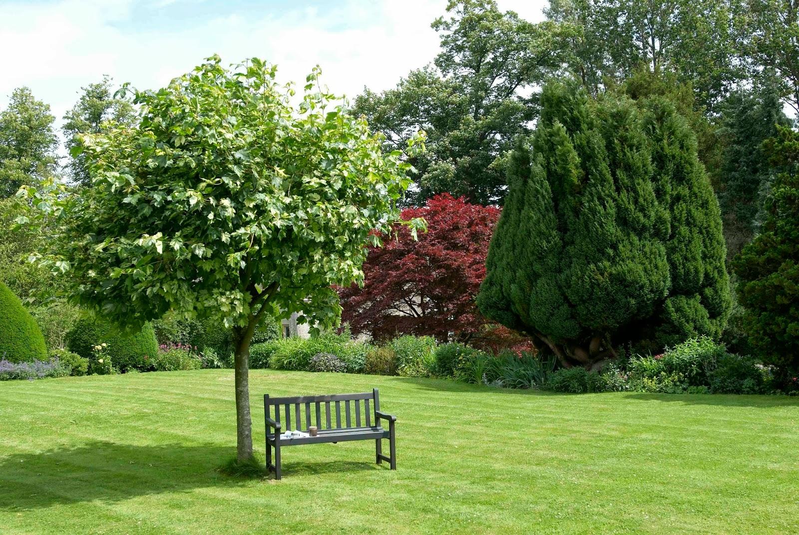 banco de jardim fazer:decoração bancos para jardim nada mais bonito  #7B9437 1600x1071