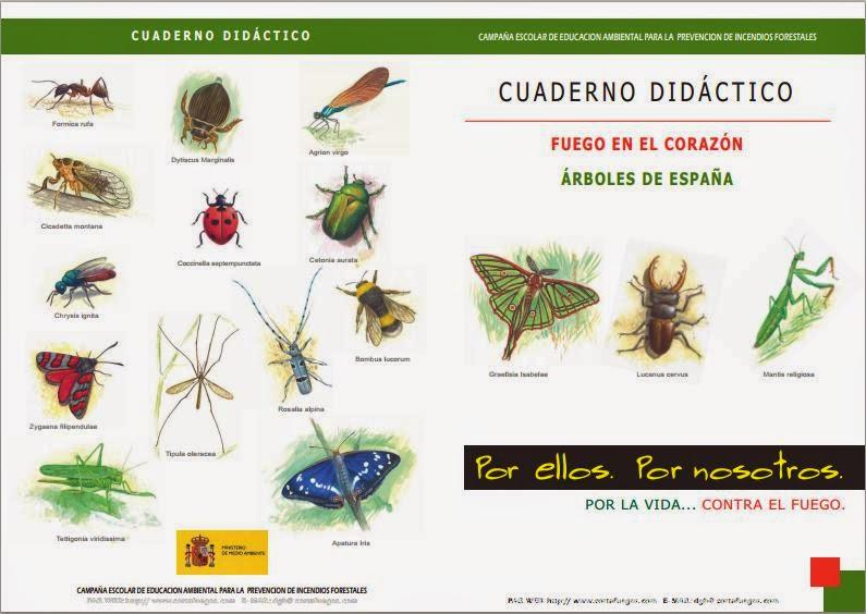 http://www.cortafuegos.com/downloads/librillo06.pdf
