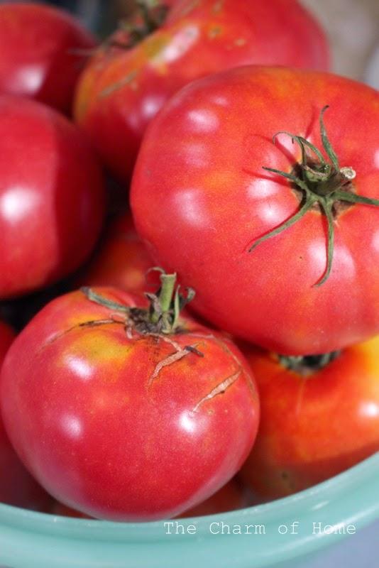 Easy Tomato Chili