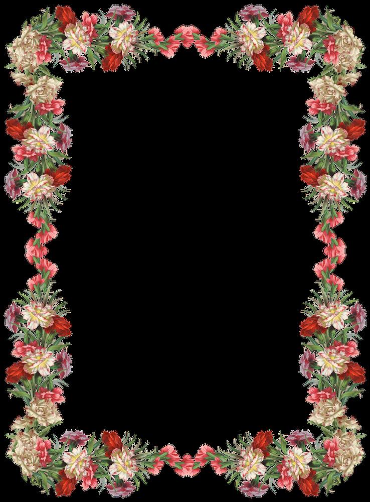 of floral frames - photo #29