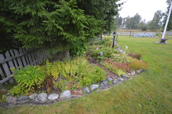 Årets trädgårdsplaner