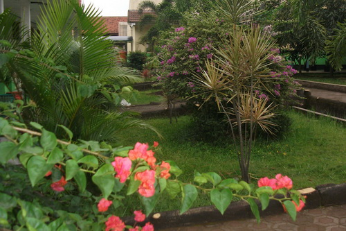 Ravena Zahra Nurahmah Disain Taman Sekolah Cantik Beautiful School Garden Design