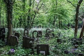 Cementerio Sami.