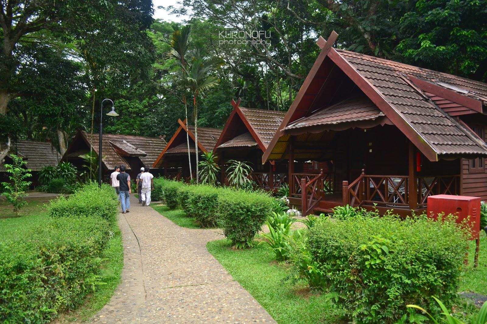 Faiz Ismail S Blog Mutiara Taman Negara Pahang