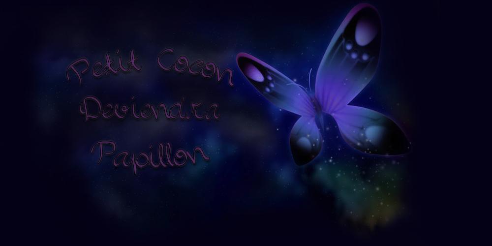 Petit cocon deviendra papillon