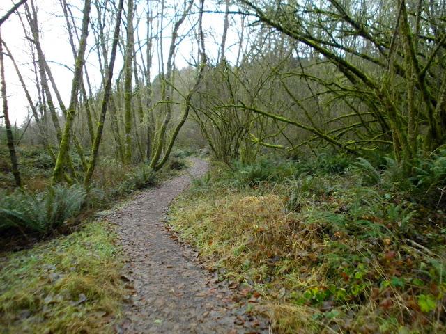 Mt Talbert Nature Park
