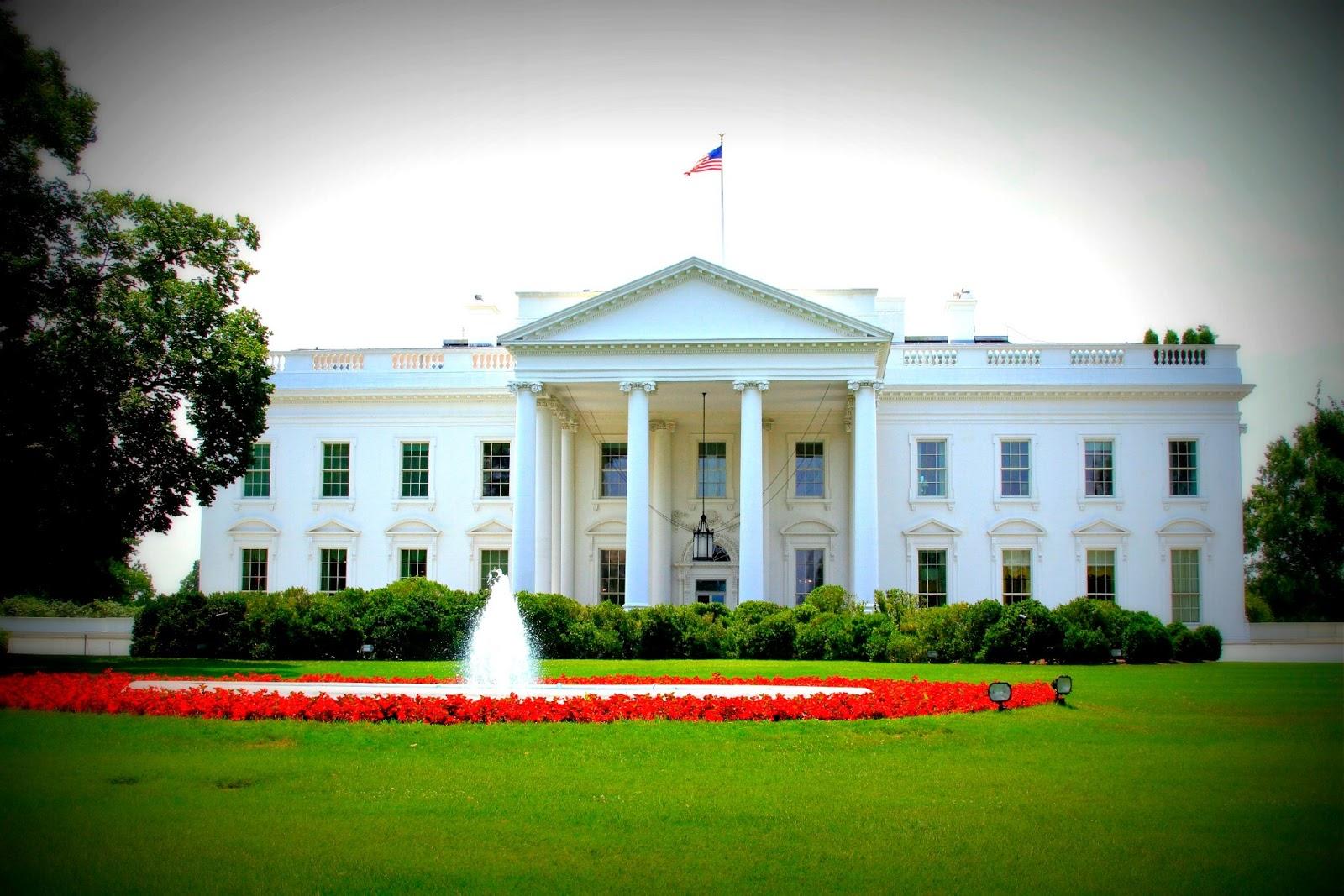 Цветы у белого дома фото