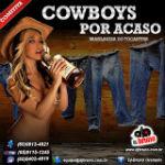 Comitiva Cowboys Por Acaso II 2012