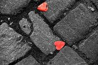 Frase de Amor, Amou, Ser Bom, Cervantes, Frase Carinho, Frase Romance