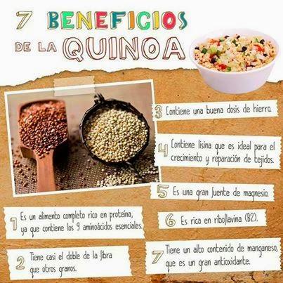 Natorg nica ensalada de quinoa y chia 39 natorg nica 39 for Cuanto se cocina la quinoa
