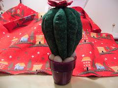 Sal Cactus