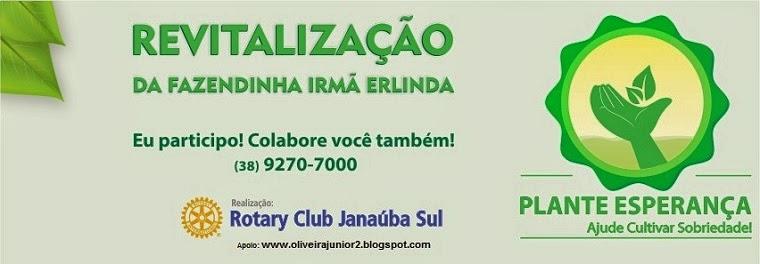 CAMPANHA EM PROL DA FAZENDINHA IRMÃ ERLINDA, DE JANAÚBA