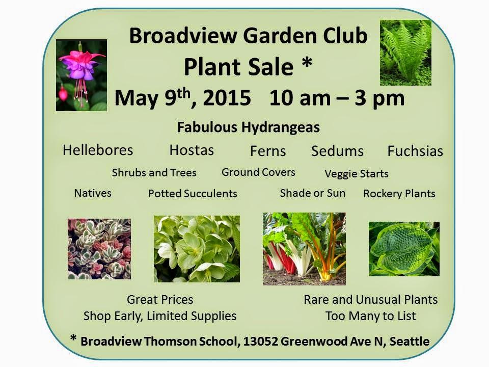 Shoreline Area News Broadview Garden Club Plant Sale Saturday