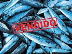 Todo el pescado esta vendido