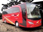 Bus Pariwisata Agra Icon
