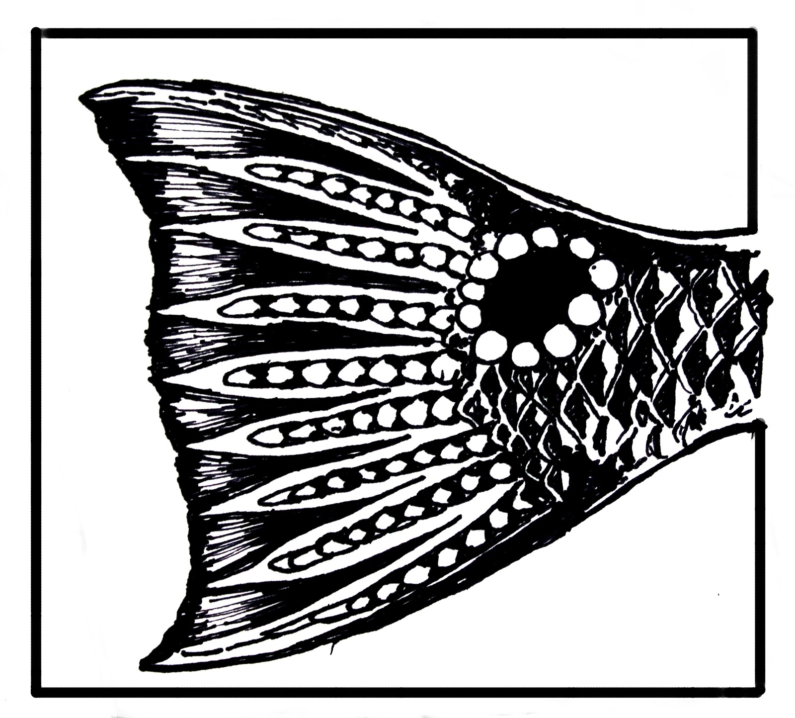 Redfish Drawing Haven t had much time to drawRedfish Drawing